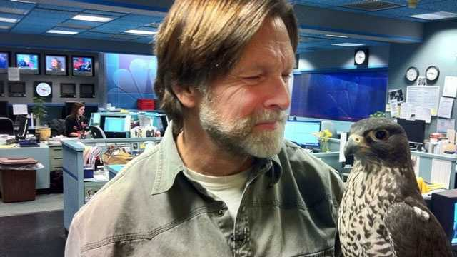 Jack Hubley visits the WGAL newsroom with his friend Emma, a rare gyrfalcon.