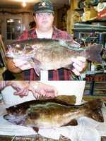 Bass, Smallmouth (Micropterus dolomieui): 8 lb. 8 oz. -- caught by Robert T. Steelman of Havertown in 1997 at Scotts Run Lake.