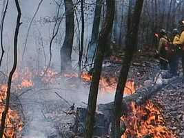 A forest fire in Berks County is now under control. Officials said the blaze near French Creek State Park continues to burn within the perimeter where it has been contained.