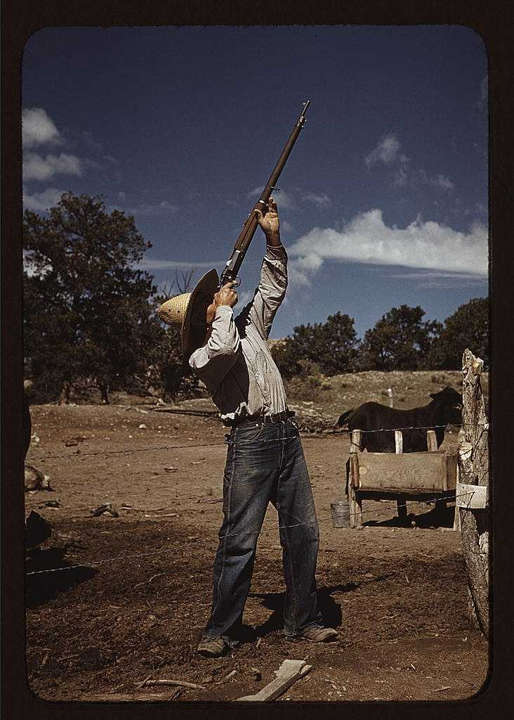Mr. Leatherman, homesteader, shooting hawks that have been carrying away his chickens in Pie Town, New Mexico. Russell Lee took this photo in October 1940.