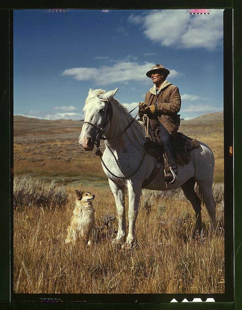 Shepherd with his horse and dog on Gravelly Range in Madison County, Montana. Russell Lee too this photo in August 1942.