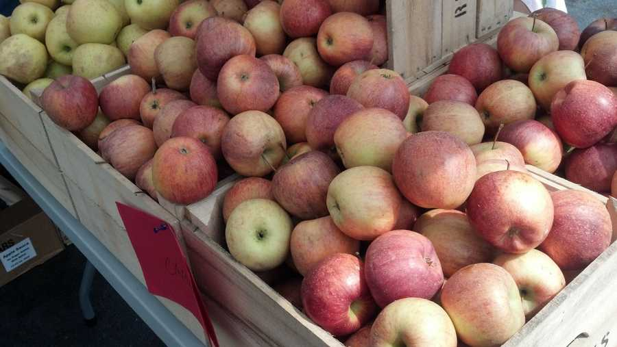The farmers market in Camp Hill, Cumberland County is up and running.