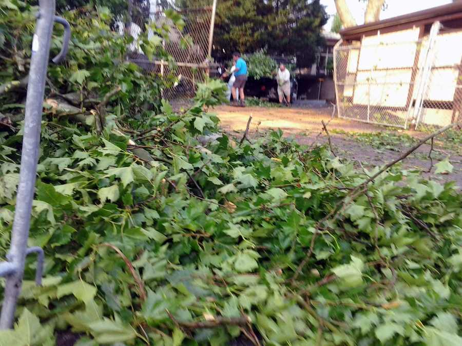 Crews clean up tree limbs outside Hersheypark.
