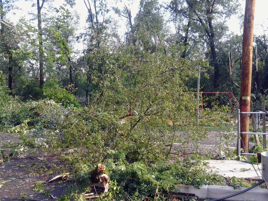 Downed tree limbs at a park in the village of Union Deposit.
