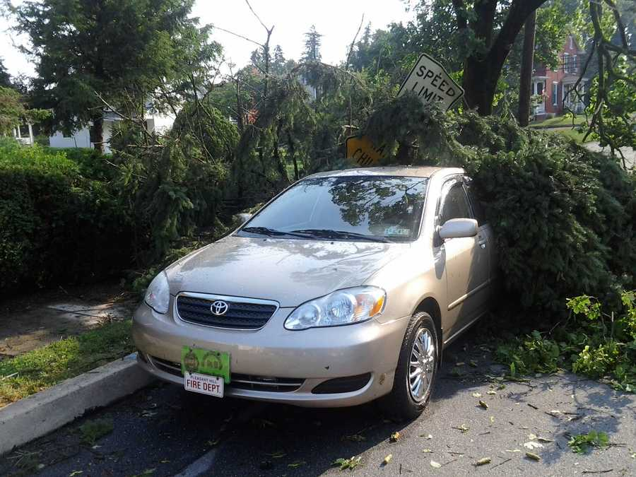 A downed tree on a car along West Main Street in the village of Union Deposit.