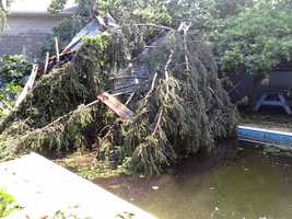 The roof and a tree landed in this swimming pool.