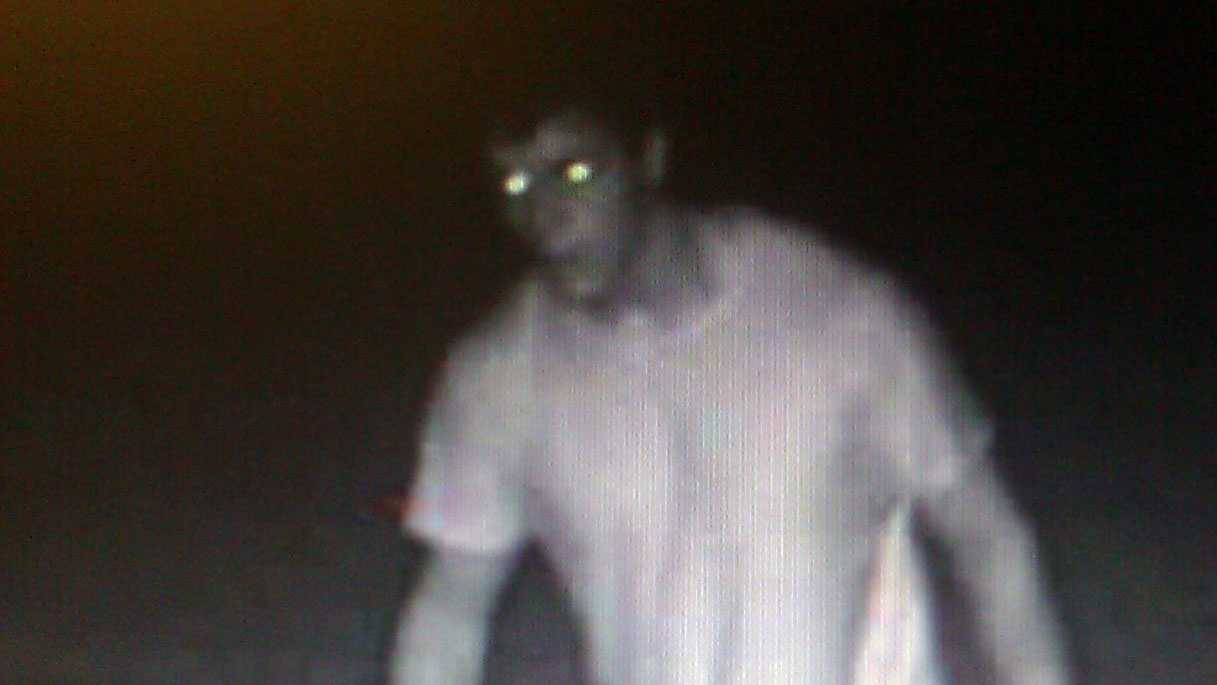 Susquehanna Regional Police released this surveillance photo of a burglary suspect.