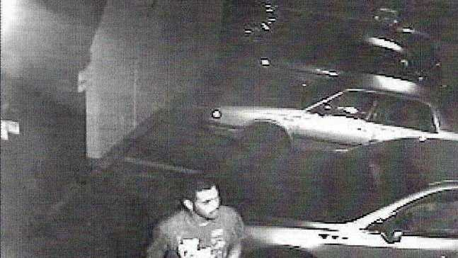 Swatara Township police released this photo of the theft suspect.