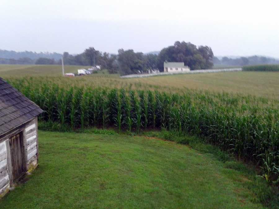 The girl had been last seen playing with friends at the edge of a cornfield about 8 p.m. Thursday, police said.