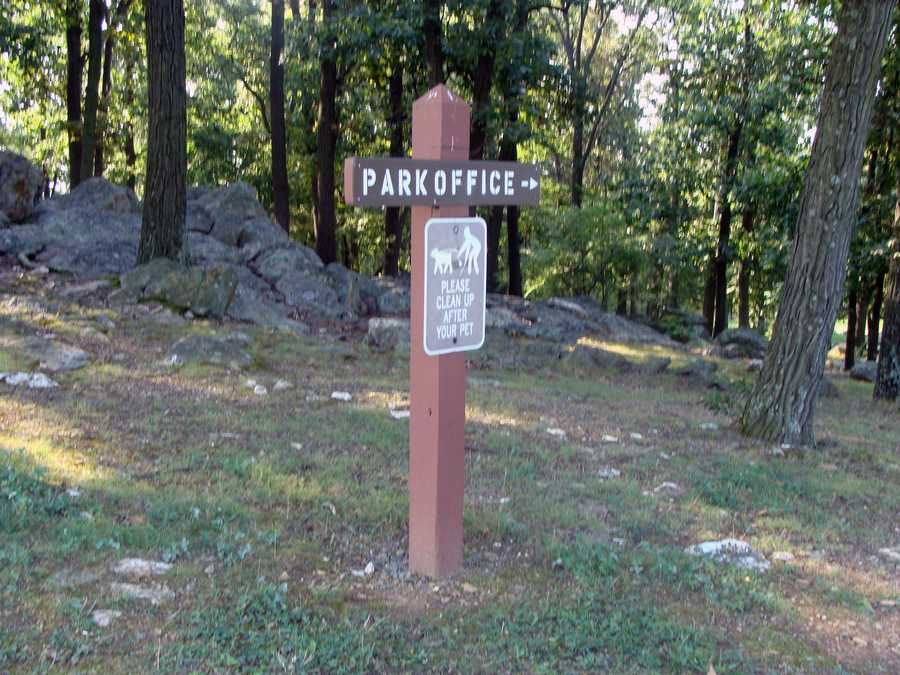 The one-mile Back Trail, which is located behind the park office, loops through a diverse hardwood forest.