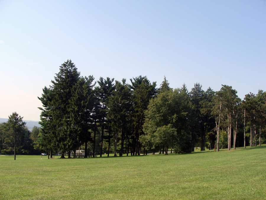 The Commonwealth then purchased an additional 35 acres of the adjacent Almoney Farm to complete the initial park tract. The Department of Conservation and Natural Resources purchased an additional 14 acres of land in 1999.