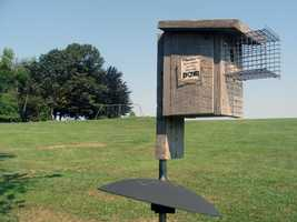 Nesting boxes for blue birds are located throughout the park.