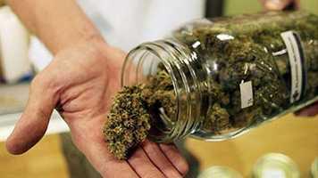 3. The main active chemical in marijuana is delta-9-tetrahydrocannabinol, or THC for short.