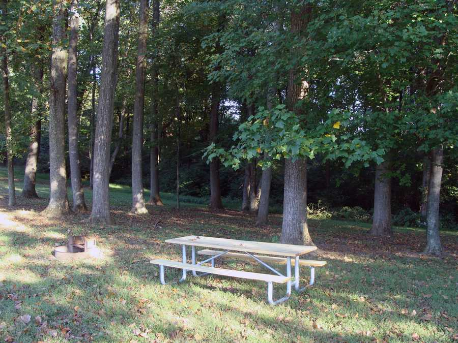 The campsites can accommodate groups as large as 300 people. Click here for more information.