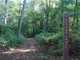 Nature Trail features a nice group of mature hardwood trees and is an easy 0.3-mile walk.