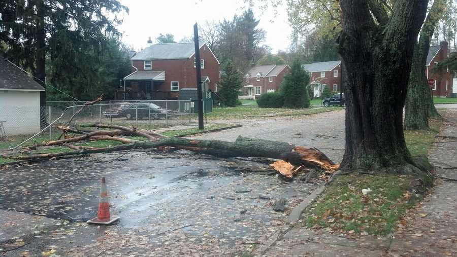 Tuesday: Tree limb stripped off, 700 block 5th Street in New Cumberland next to Memorial Field. Branch brought down utility line connected to a house.