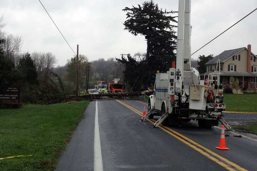 Wednesday: A tree is down on Route 897 near Cocalico Road.