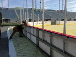 The 2013 Capital BlueCross AHL Outdoor Classic is Jan. 19 and 20 at Hersheypark Stadium.