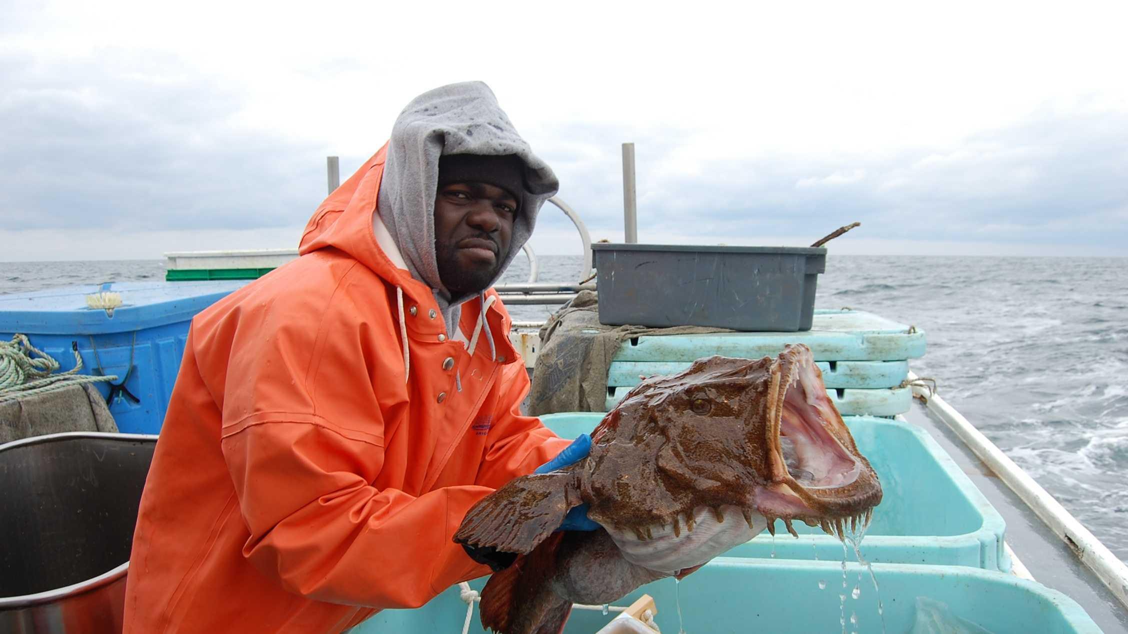 Monkfish blurb