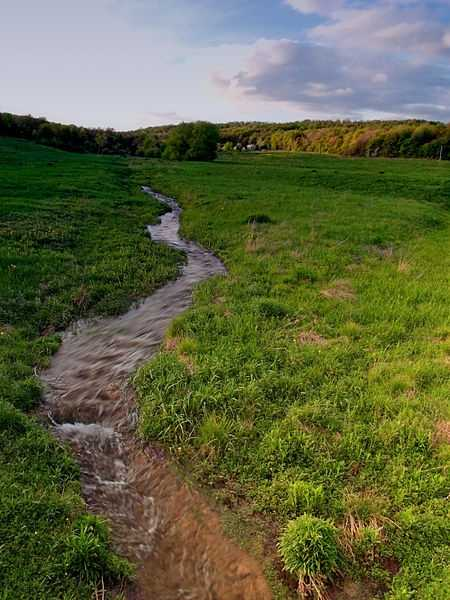 Most never see this – the headwaters of the river in Potter County, Pa.