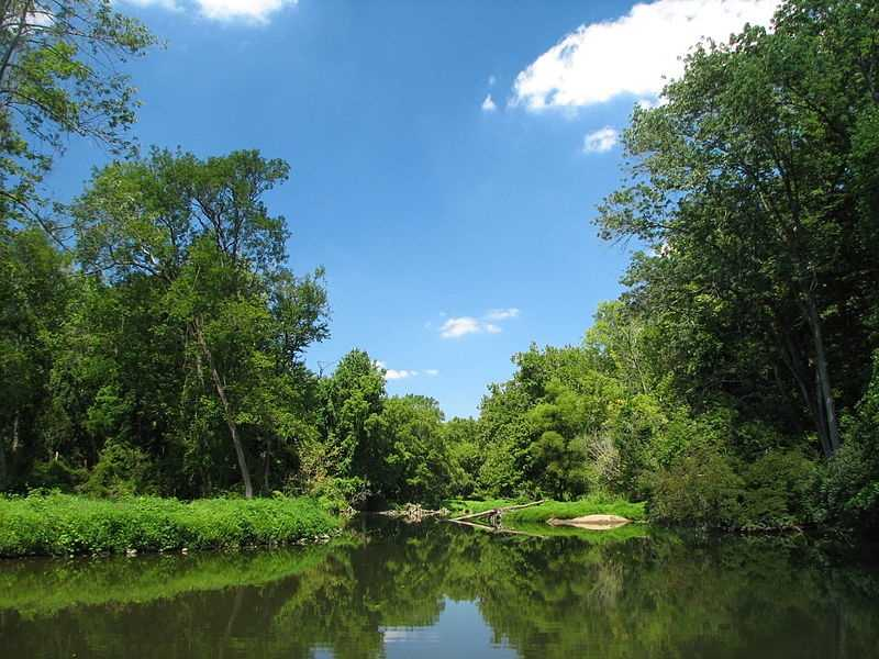 4. White Clay Creek. The actual river, which is in Pennsylvania and Delaware, is only about 20 miles long. But unlike other rivers on this list, an entire area around the river, including other tributaries and wetlands, have been designated as Wild and Scenic.