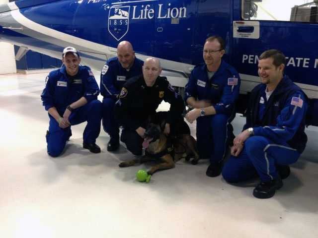 Zeke, the Harrisburg police dog, who was shot in the line of duty and his handler, Cpl. Ty Meik, were reunited with the Penn State Hershey Life Lion critical care transport team.
