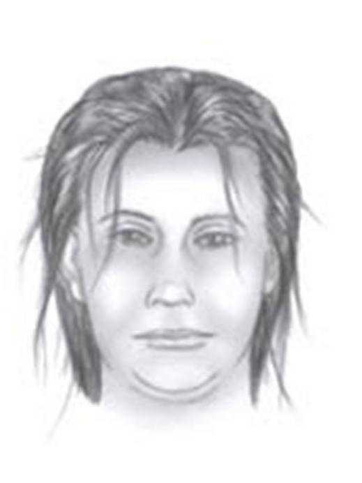 Unknown female suspected in Bryan Dos Santos-Gomez abduction.