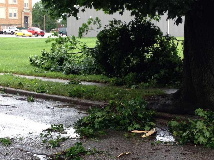 Branches were knocked down at Abermarle and Hay streets in York.