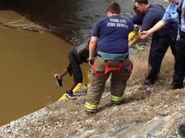 Rescuers pulled two boys from the rain-swollen Codorus Creek in downtown York on Thursday afternoon.