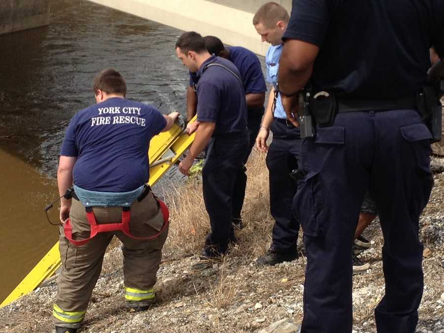 The rescue came after the boys, who were fishing, ended up in the water near the Beaver Street Bridge.