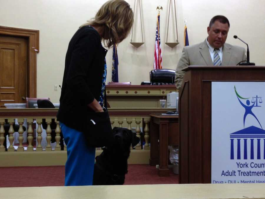 The 24-month-old black Labrador Retriever will work primarily with defendants in the county's Treatment Court.