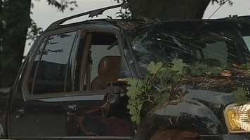 A tree fell on this vehicle, which was parked in a driveway on Paradise Lane.