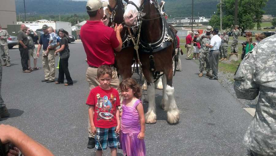 The Clydesdales will be on the apron area for photo opportunities with fans until about 7 p.m. both days, weather permitting.