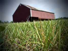 Spangler Farm