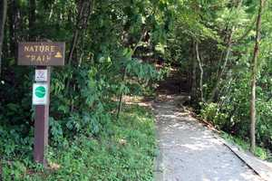 The Nature Trail is an easy hike along the lake.