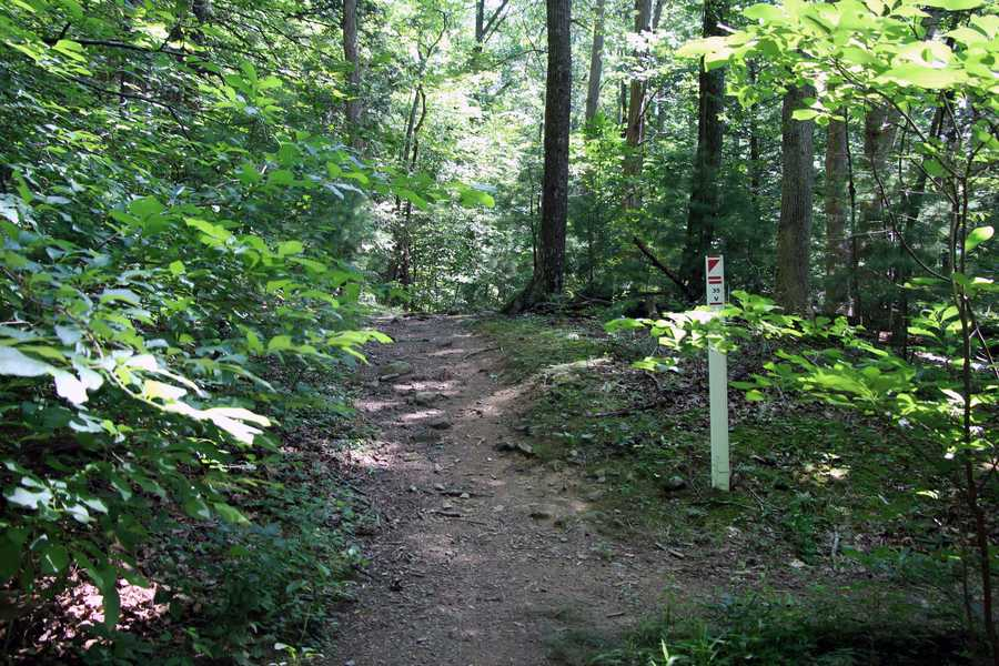There are three orienteering courses to challenge your map and compass skills: beginner, intermediate and advanced. Trail maps are available at the park office or the nature center.