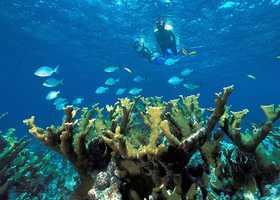 Biscayne National Park – Florida: $7,100,000
