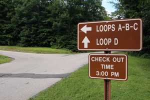 The wooded camping sites are organized into four loops. For a campground map, click here.