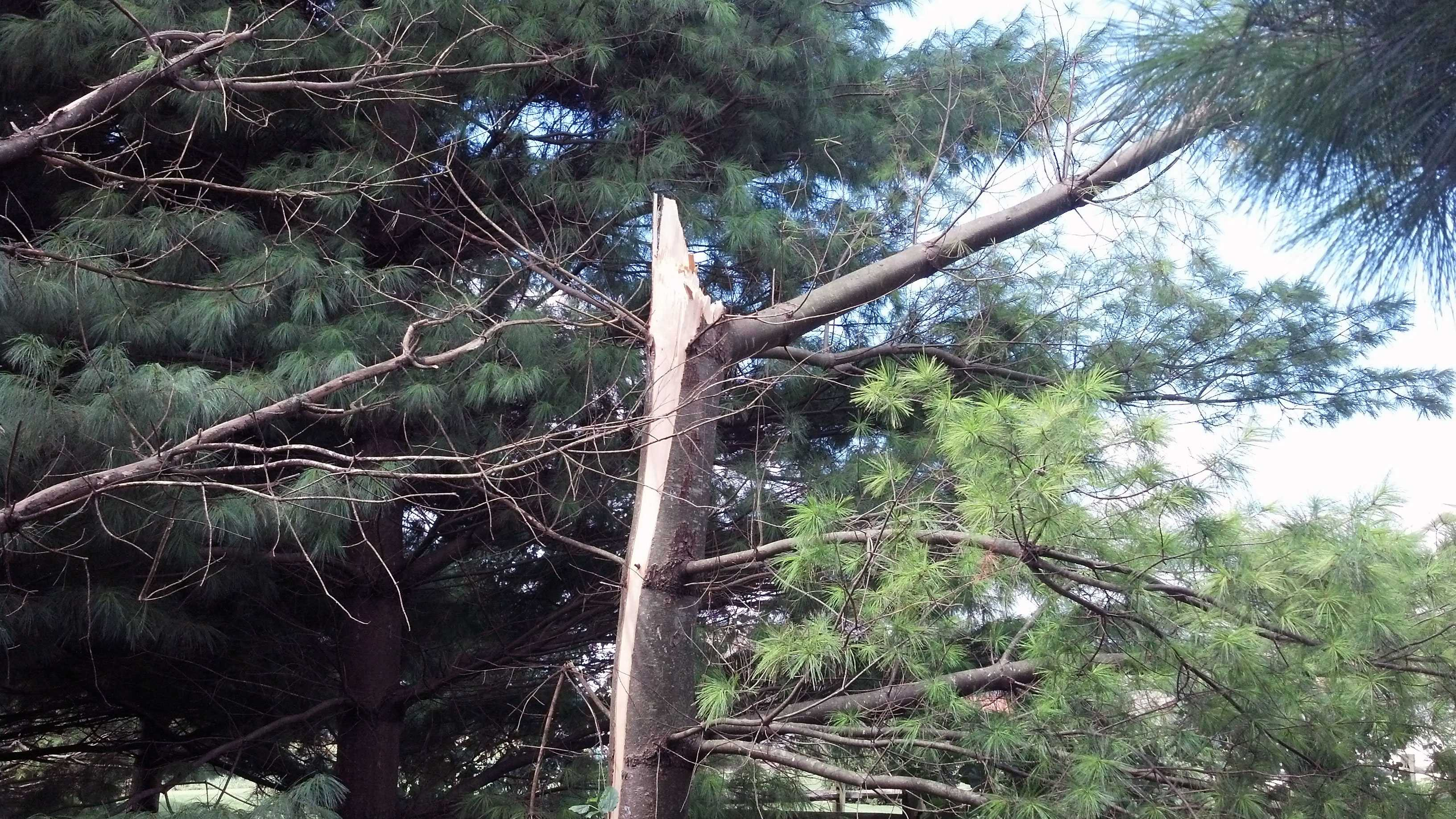 9.3 storm damage