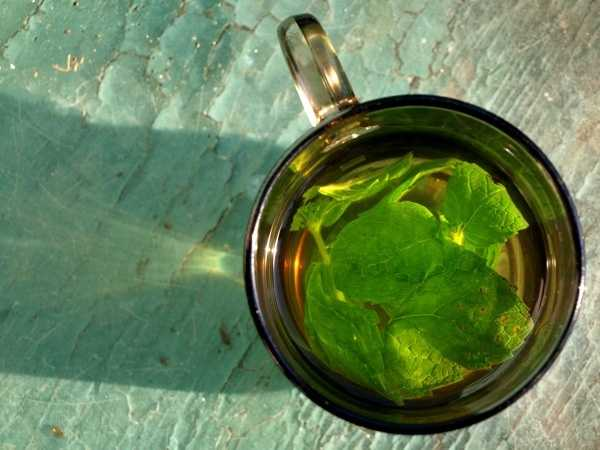 Meadow tea, which is a type of tea made from a type of mint found in Pa. meadows.