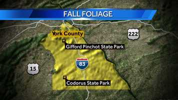 Click here for a tour of Codorus State Park.Click here for a tour of Gifford Pinchot State Park.