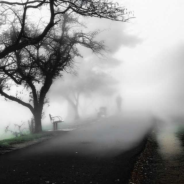"""Regardless of what you think about ghosts - this is definitely a spooky shot. """"I thought I was alone :-) Definitely gave me goose bumps:-)"""" writes the photographer."""