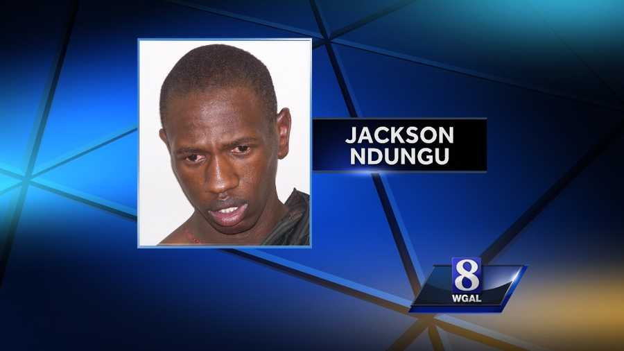 Monday, Nov. 11: New Holland police said they had to use a stun gun on Jackson Ndungu, 27, early Monday after he resisted arrest during a domestic dispute with his girlfriend. The victim's 8-year-old son called 911 but Ndungu took the phone so the boy could not tell the dispatcher what was happening, police said. During the fight, the victim tried to get away and cut her leg when she fell into a mirror, police said. Ndungu is in Lancaster County Prison with bail set at $50,000.