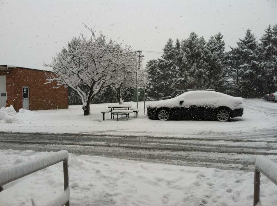 Snow falling in WGAL's back parking lot Tuesday morning.