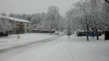 Lower Allen Township, Cumberland County, 9:20 a.m. Monday. Township is under snow emergency. All vehicles must be removed from township roads by 1 p.m. Monday.