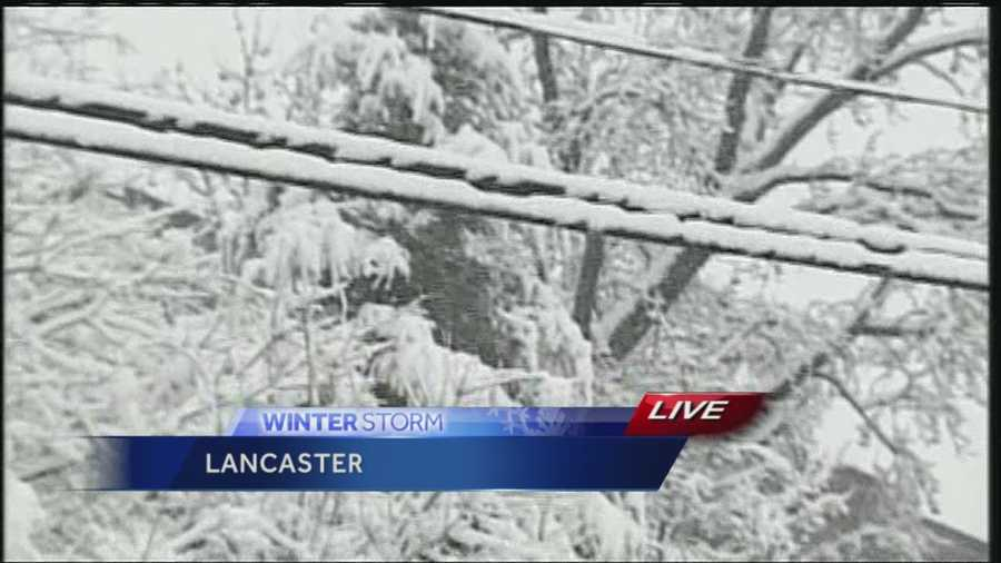 Heavy snow clings to powerlines, Lancaster, noon Monday.