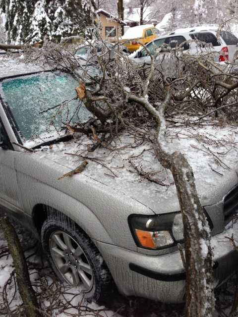 A large tree in East Hempfield Township, Lancaster County, was one of just many that came crashing down Wednesday morning, but this one landed on a house and two cars.