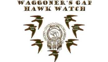 Bring binoculars and go hawk watching at Waggoner's Gap Hawk Watch on Kittatinny Ridge a.k.a. Blue Mountain in Carlisle, PA. Visit www.waggap.com for more information.