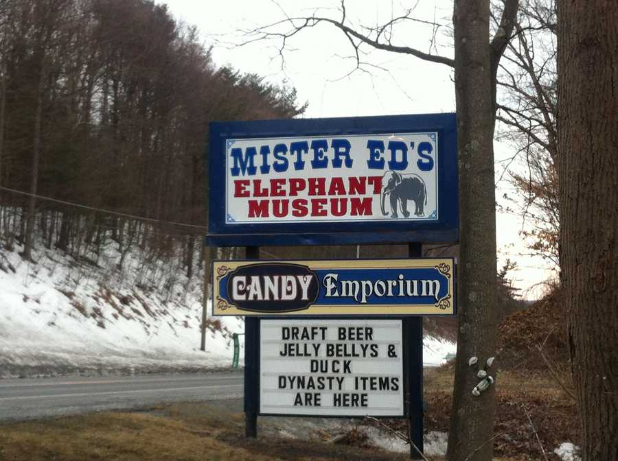A unique museum is nestled in the Susquehanna Valley: Mister Ed's Elephant Museum and Candy Emporium features over 10,000 elephant figures. Learn more at www.mistereds.com.