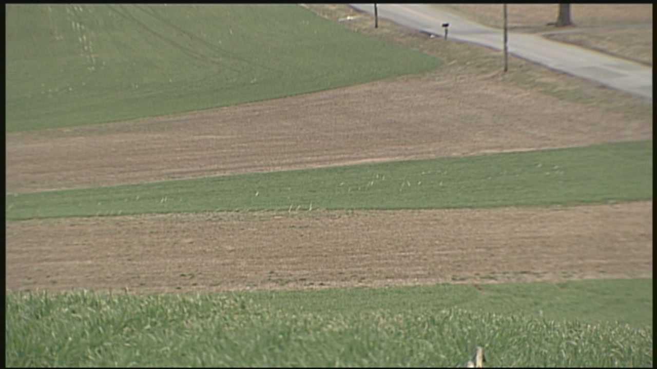 Spring crops 3.27.14